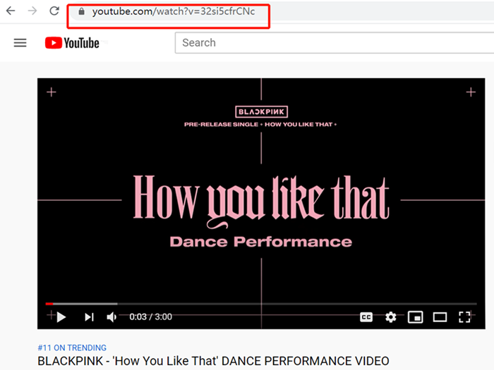 copy-a-youtube-video-url